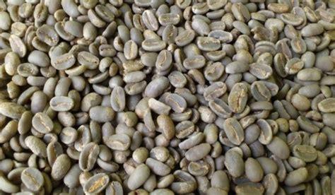 Kopi Toraja Robusta kopi kopi terbaik di indonesia