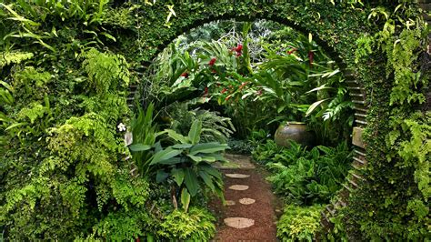 Garden Of Quality Nature Flowers Garden Plants Gate Sri Lanka Wallpaper