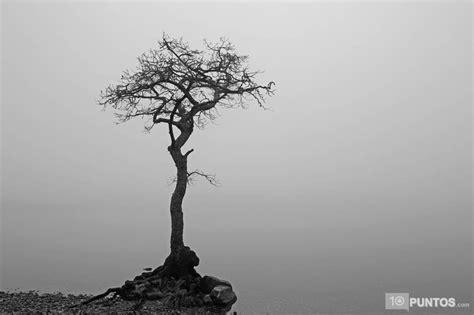 Imagenes Minimalistas Naturaleza | 10 fotos de la naturaleza minimalista