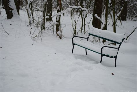 bench winter snowy bench