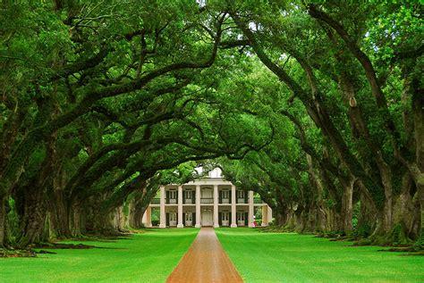 louisiana house oak alley plantation a photo from louisiana south