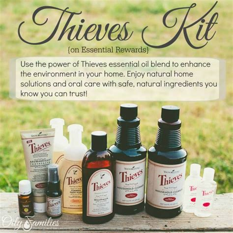 using thieves in your kitchen the oily home companion unleash the power of thieves oil and ningxia red for super