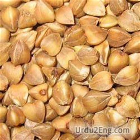 whole grains urdu meaning buckwheat urdu meaning