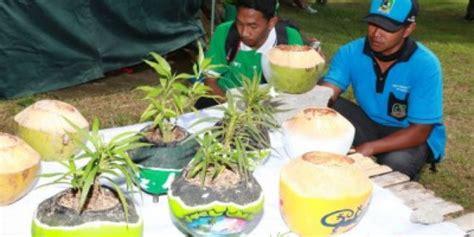 batok kelapa disulap jadi pot bunga wagata berita