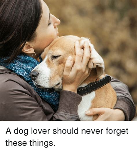 Dog Lover Meme - a dog lover should never forget these things meme on sizzle