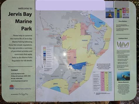 Best National Parks by Jervis Bay Marine Park