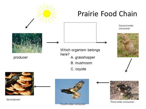 prairie food the prairie review ppt
