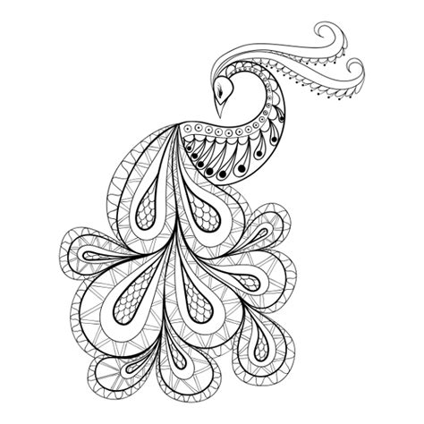 peacock coloring pages for adults peacock coloring pages animals coloring pages