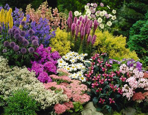 flower garden ideas pictures how to develop flower garden ideas interior decorating