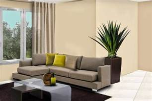plants for a room www freshomedecor blogspot com how to decorate your
