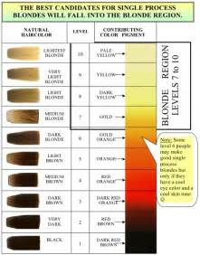 hair color levels level 6 hair color for highlights brown hairs