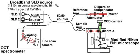 superluminescent diode visible schematic of spectral fourier domain oct system and microscope