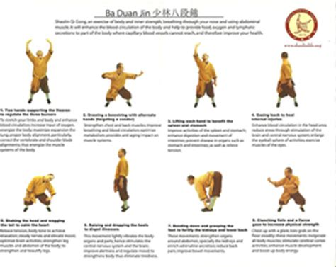 Eight Section Brocade by Ba Duan Jin Pdf