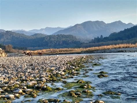Uttarakhand Search Ramnagar Uttarakhand