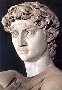 Michelangelo David Sculpture Michelangelo David Head Images Amp Pictures Becuo