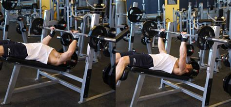 bench press variations bench press variations how it affects your target