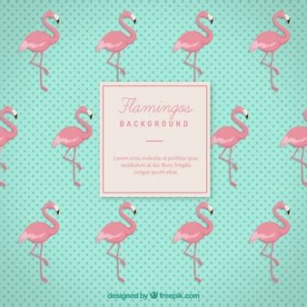 Frame Bingkai Pigura Poster Flamingo A4 flamingo vectors photos and psd files free