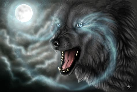 wallpaper dark wolf 3113 dark wolf hd images wallpaper walops com