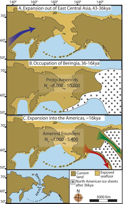 american migration from asia map land bridge to alaska opened 17 000 years ago allowing