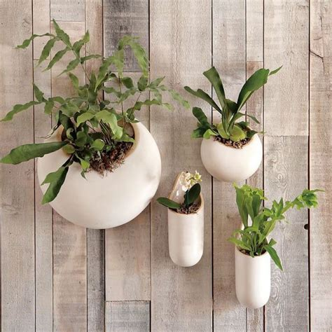 planters that hang on the wall 11 ways to get in on the wall plant hanging trend for