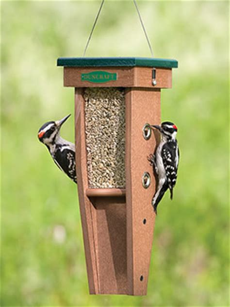 download woodpecker feeder plans plans free