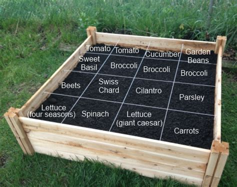 perfect spacing how to lay out a nursery project nursery 12 inspiring square foot gardening plans ideas for plant