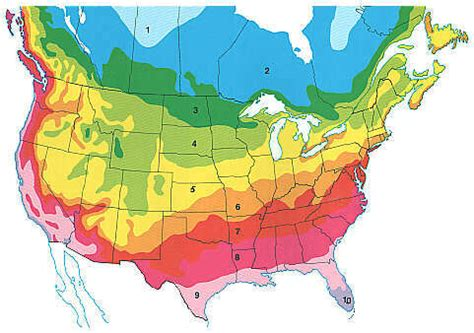 map of growing zones in america planting zones america