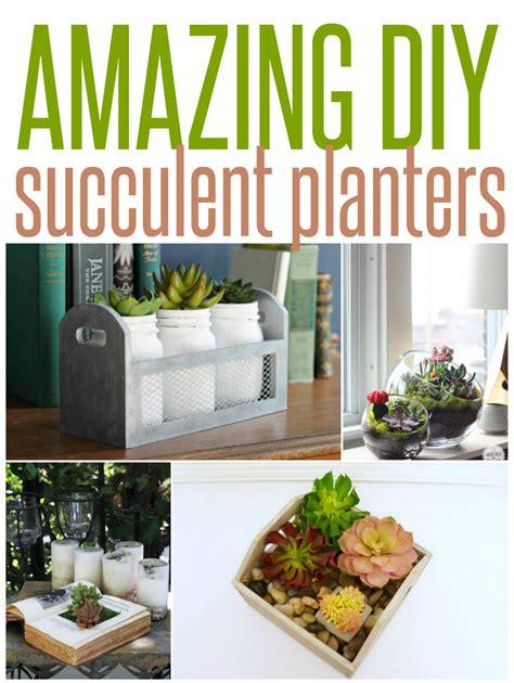 succulent planter diy five amazing diy succulent planters infarrantly creative