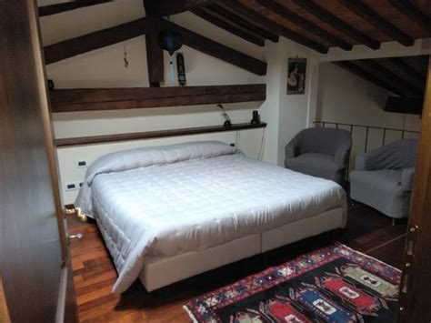 rent  bed apartment  florence firenze florence
