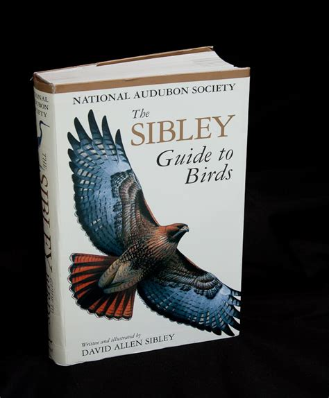 the sibley guide to birds review points in focus photography