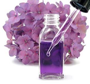 terapia fiori di bach farmacia centrale merano terapia dei fiori di bach