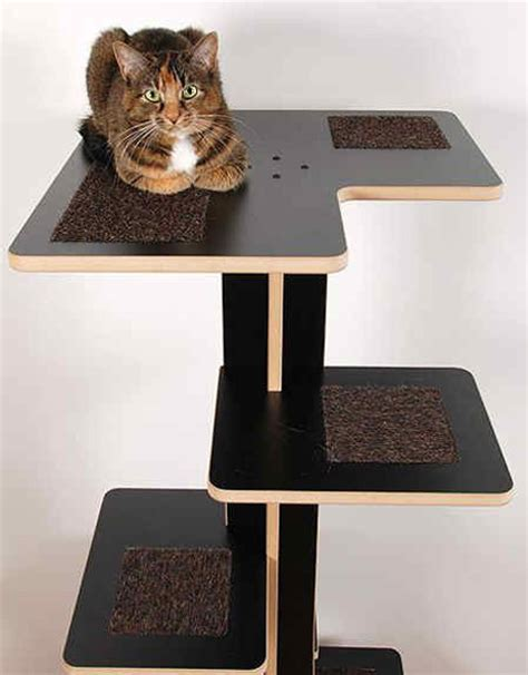 what your cat furniture says about you catster