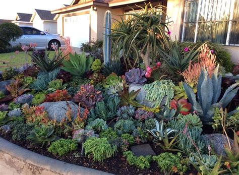 Rock Garden Pictures Ideas Plans Exles 25 Best Ideas About Succulent Rock Garden On Garden Blocks Rock Walkway And Besser