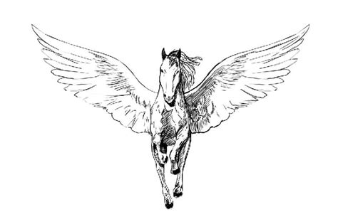 100 latest sketches pegasus tattoos drawings golfian com