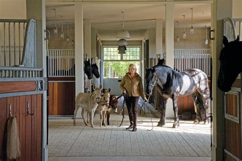 Martha Stewart Rides A Stallion by Martha Moments Cantitoe Corners