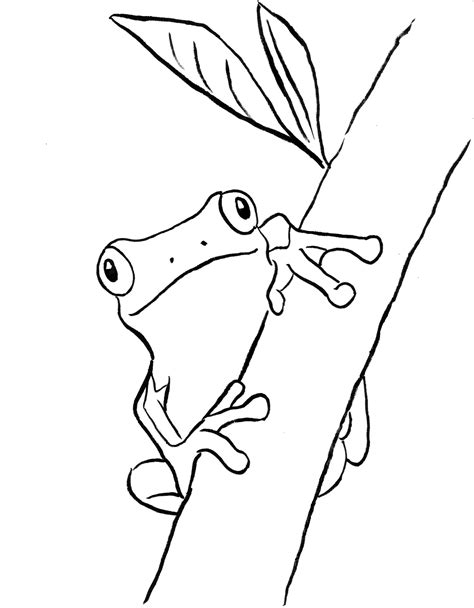 coloring pages coloring book tree frog coloring page bell