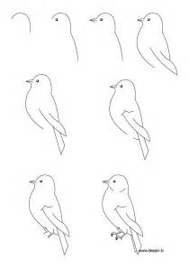 How To Draw Bird Drawing Bird