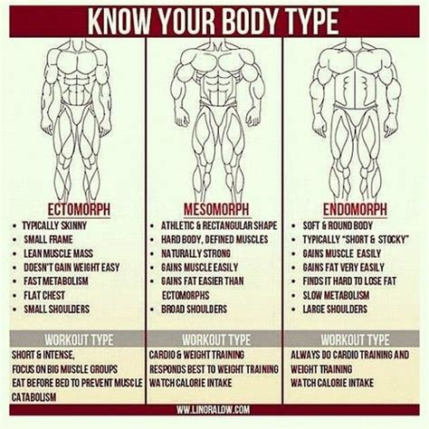 mesomorph ectomorph diet and workout