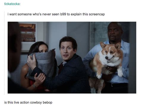 Brooklyn Nine Nine Meme - brooklyn nine nine someone explain this picture know