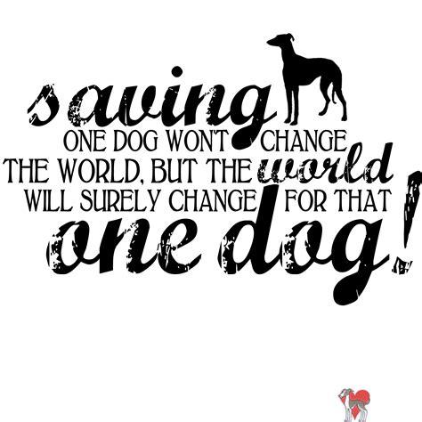 where can i adopt a puppy near me where can i adopt a puppy near me pets world