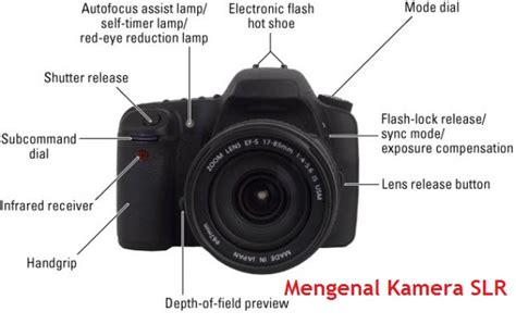 mengenal kamera slr berita artikel informasi seo back link building dgspeak
