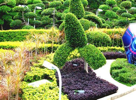 beautiful backyard landscaping ideas beautiful backyard landscaping ideas with backyard