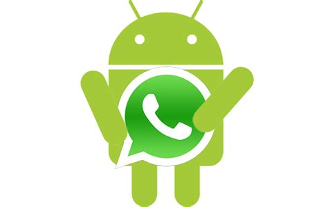 apk de whatsapp para android aprende como guardar im 225 genes audio de whatsapp tutorial android