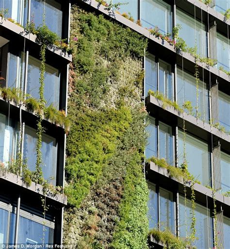 Vertical Garden Sydney Vertical Gardens Attached To The Outside Of