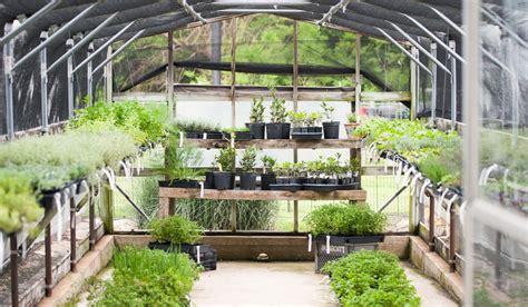 joanna gaines greenhouse gardening start small magnolia market