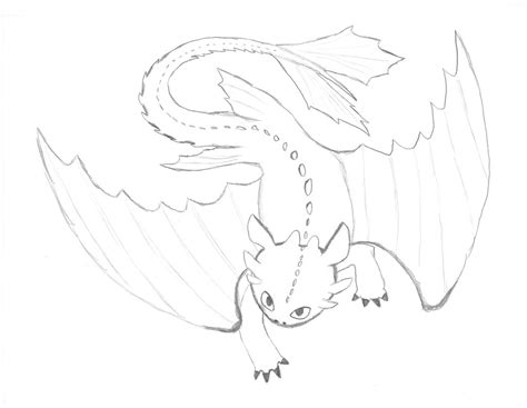 coloring pages of toothless dragon the gallery for gt toothless how to train your dragon drawing