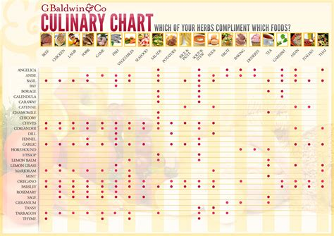 herb chart which of your herbs compliment what foods g baldwin co