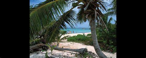 bahama pineapple l il pineapple festival bahamas