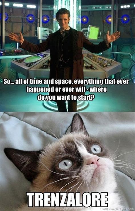 Doctor Who Cat Meme - doctor who grumpy cat geeky pinterest
