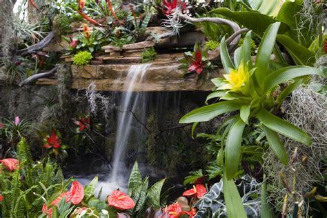 Tropical Flower Garden Tropical Flower Garden Design Ideas